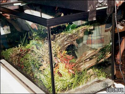 La siguiente foto es una imagen de la parte posterior del tanque