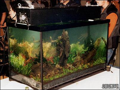 En la primera fotograf�a de la serie se puede apreciar la parte frontal del acuario