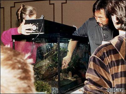 se añade al acuario la pantalla estanca que contendrá los tubos fluorescentes. En este caso dos tubos de 96 w.