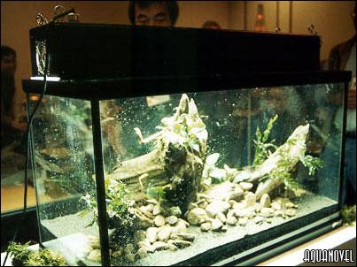 Se conectan los tubos fluorescentes para comprobar el aspecto que esta tomando el tanque