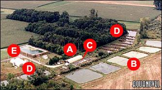 Disposición de las instalaciones de piscifactoría.