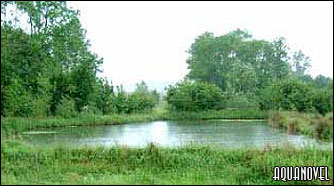 El principal recurso de la piscicultura: el agua.