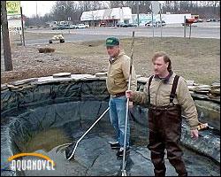 Instalando el estanque