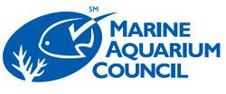 El agua del acuario, química y el empleo de acondicionadores