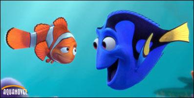 Bilden ?http://www.aquanovel.com/images/articulos/nemo/nemo_dori.jpg? kan inte visas, då den innehåller fel.