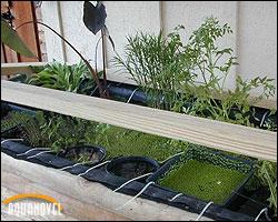 Vista de instalación de diferentes tipos de plantas