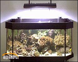 La altura de la instalación lumínica es importante para aprovechar al máximo su intensidad