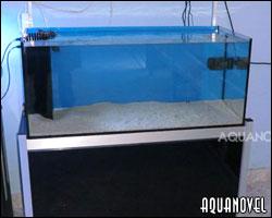 Primer capítulo de nuestro curso de acuariofilia marina. La elección del acuario, el agua marina y los tipos de sal marina